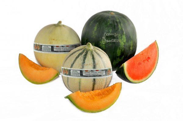 vendita meloni